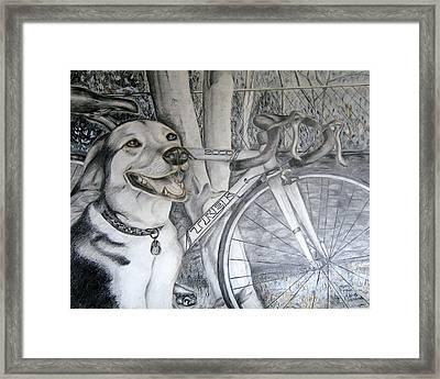 Sapphire And Bike Framed Print by HHolly Bazmi