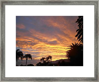 Framed Print featuring the photograph Sarasota Sunset by Sheila Silverstein
