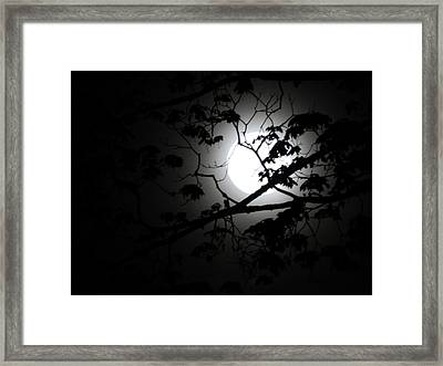 Saturday Supermoon Framed Print by Dennis Leatherman