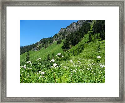 Sauk Mountain Framed Print by Karen Molenaar Terrell