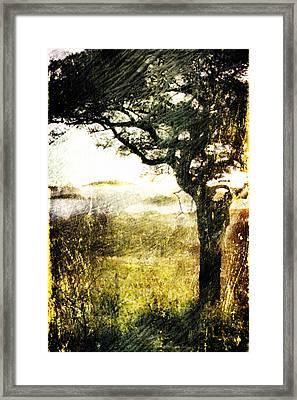 Framed Print featuring the digital art Savana by Andrea Barbieri