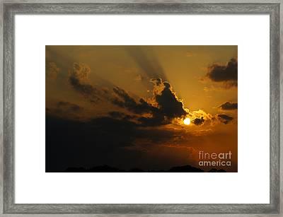Savanna Sunset Framed Print by Lynda Dawson-Youngclaus