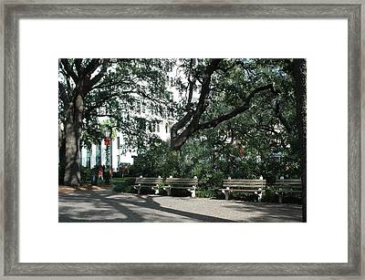 Savannah Historical District Park Benches And Trees Framed Print