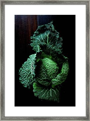 Savoy Cabbage Framed Print by Ingwervanille