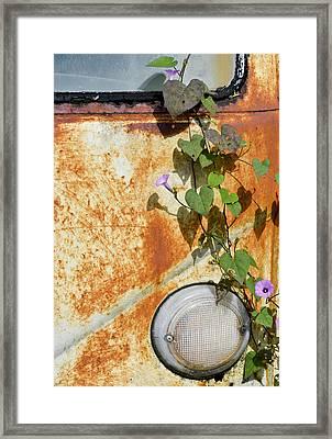Say Goodbye Framed Print by Carolyn Marshall