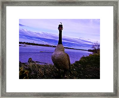 Say What Framed Print by Joshua Dwyer