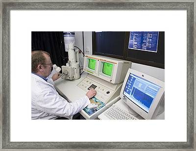 Scanning Electron Microscope Framed Print by Paul Rapson