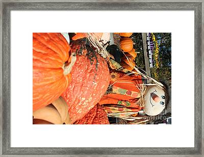 Scarecrow Framed Print by Nathan Grisham