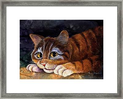 Scaredy Cat Framed Print by Sherry Shipley