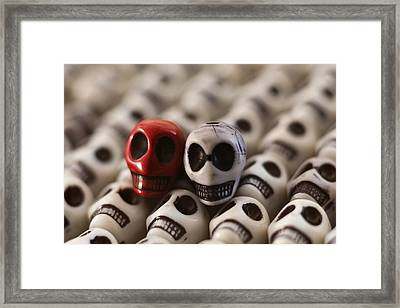 Scarlet And Grey Framed Print by Mike Herdering