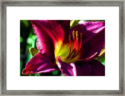 Framed Print featuring the digital art Scarlet Lady by Brian Davis