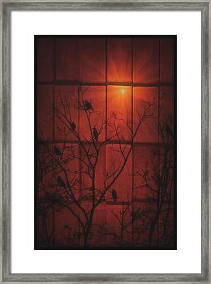 Scarlet Silhouette Framed Print by Tom York Images