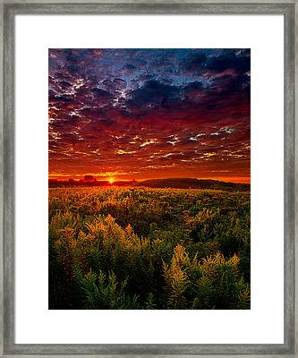Scarlett Framed Print by Phil Koch
