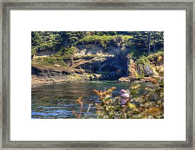 Scene At Boiler Bay Framed Print by Chris Anderson