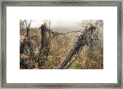 Scenic Overlook Framed Print by JC Findley