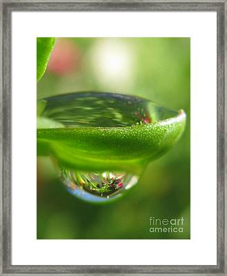 Scenic Photography Framed Print