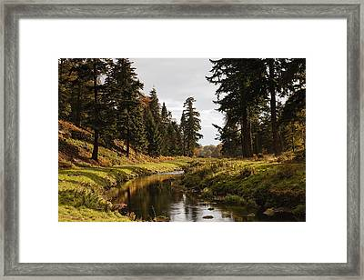 Scenic River, Northumberland, England Framed Print