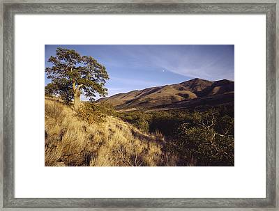 Scenic View Of The Yakima Valley Framed Print by Sisse Brimberg