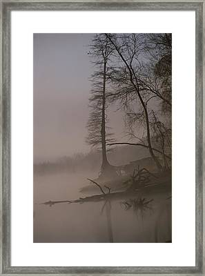 Scenic View Of Trees On The Bank Framed Print by Sam Abell