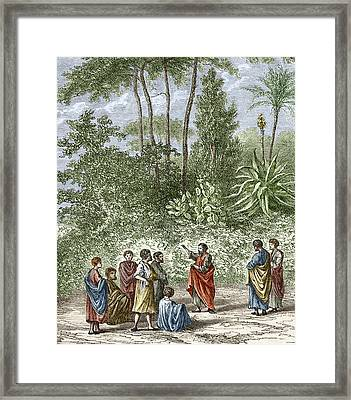 School Of Pythagoras In Croton Framed Print by Sheila Terry