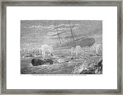 School Of Whales, 1876 Framed Print by Granger