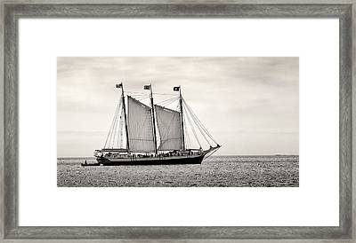 Schooner Victory Chimes 2012 Framed Print by Fred LeBlanc