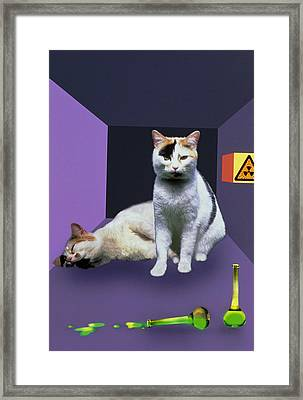 Schrodinger's Cat Experiment Framed Print by Mehau Kulyk