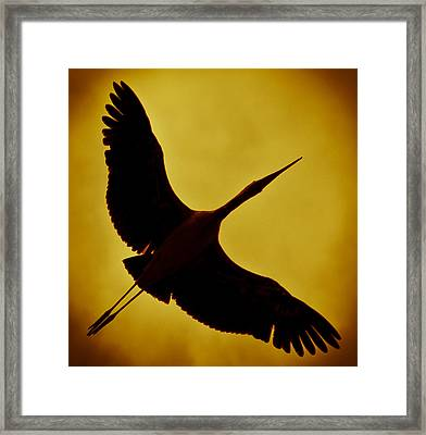 Scorched Framed Print