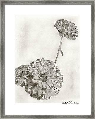 Scottish Flowers Framed Print by Michael Lukas
