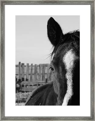 Scratches Framed Print