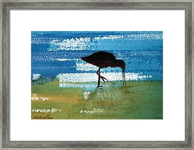 Sea Bird Framed Print by Charlotte Hickcox