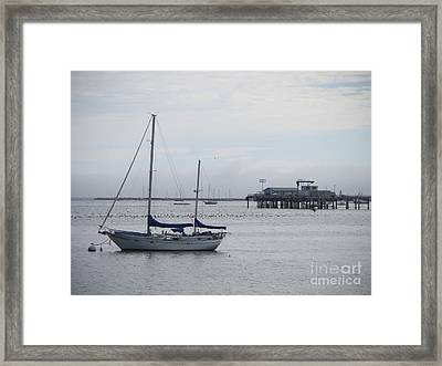 Framed Print featuring the photograph Sea Breeze by Leslie Hunziker