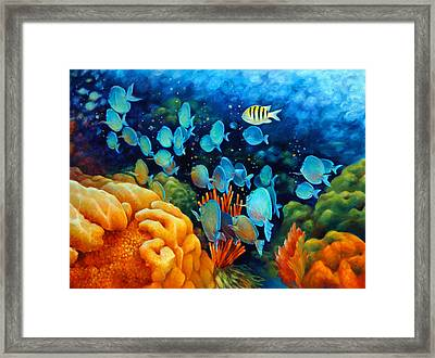 Sea Escape II - Wayward Fish Framed Print by Nancy Tilles