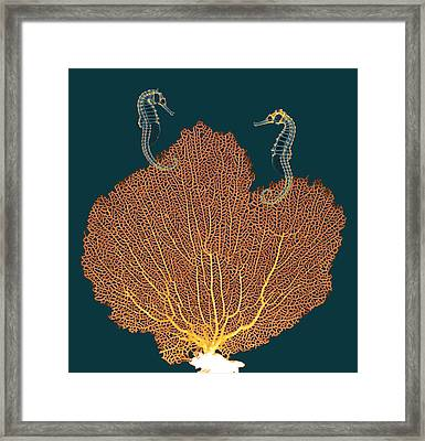 Sea Fan And Seahorses, X-ray Framed Print by D. Roberts