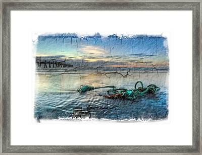 Sea Knot Framed Print by Debra and Dave Vanderlaan
