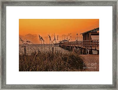 Framed Print featuring the photograph Sea Oats At Dawn by Anne Rodkin