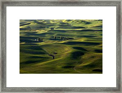 Sea Of Green Framed Print by Mike  Dawson