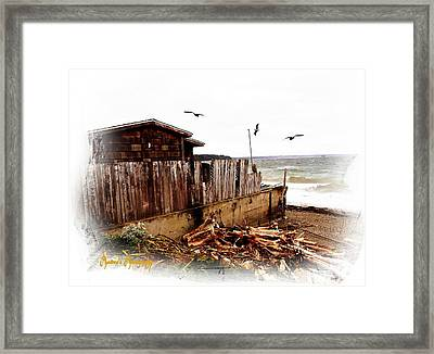 Framed Print featuring the photograph Sea Shanty by Sadie Reneau