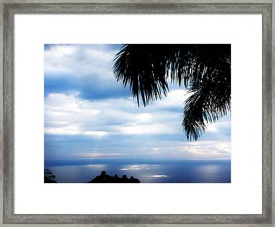 Sea Sky And Palm Tree Framed Print by Rosvin Des Bouillons