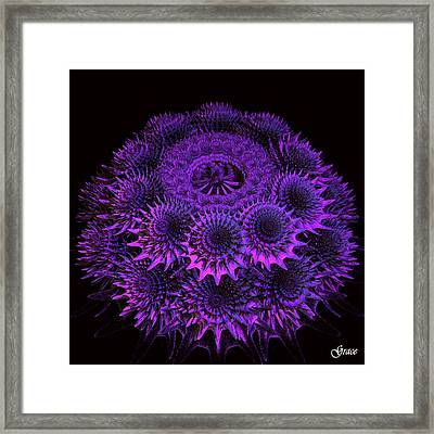 Sea Urchin Framed Print by Julie Grace