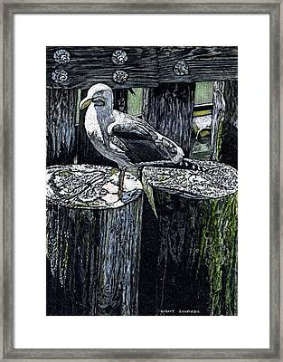 Seagull At Pier Framed Print by Robert Goudreau