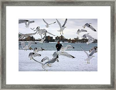 Seagulls In Flight Framed Print by Gordon Dean II