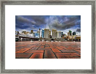 Seagull's Perspective Framed Print by Douglas Barnard