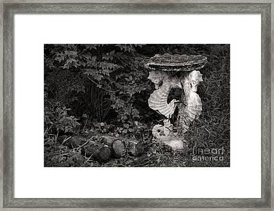 Seahorses Framed Print by Susan Isakson