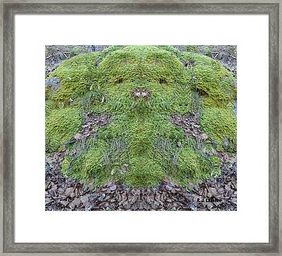 Search For The Mossman Framed Print