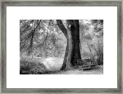 Searching For Peace Of Mind Framed Print by Sarai Rachel