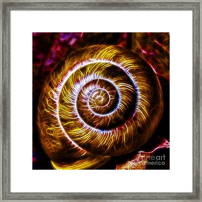 Seashell - Electric - Gold Framed Print by Wingsdomain Art and Photography