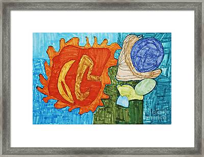Seashell Still Life Framed Print