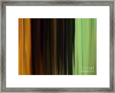 Season  Framed Print by Angela Derzaph