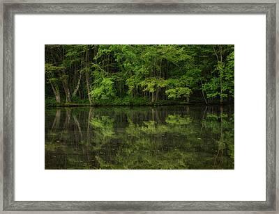 Season Of Green Framed Print by Karol Livote